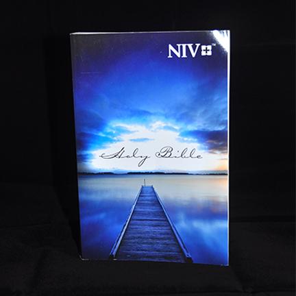 Blue Bible NIV
